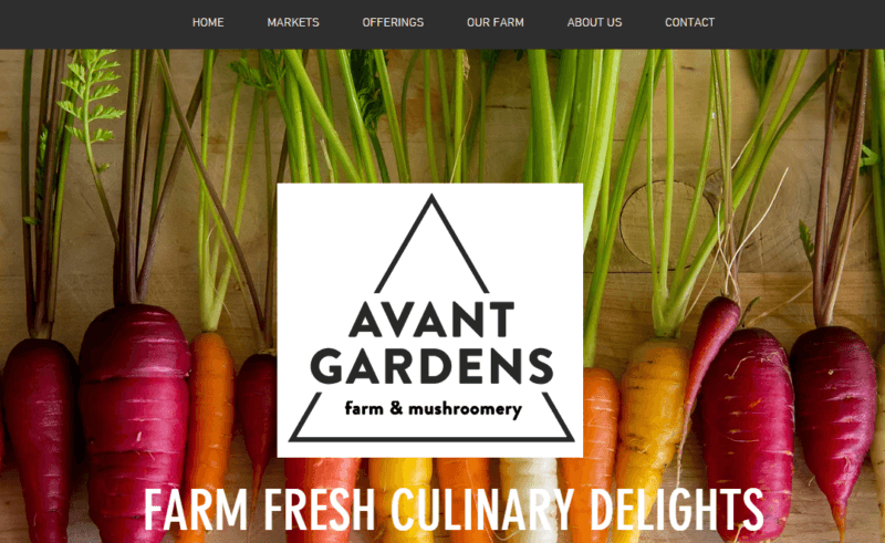 Website built with Wix